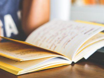 pedagogia intro tacte